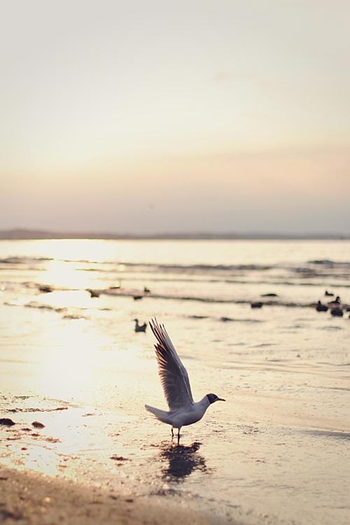 morze bałtyckie bałtyk świnoujście magdalena błaszczyk fotografia cuda niewidy 10
