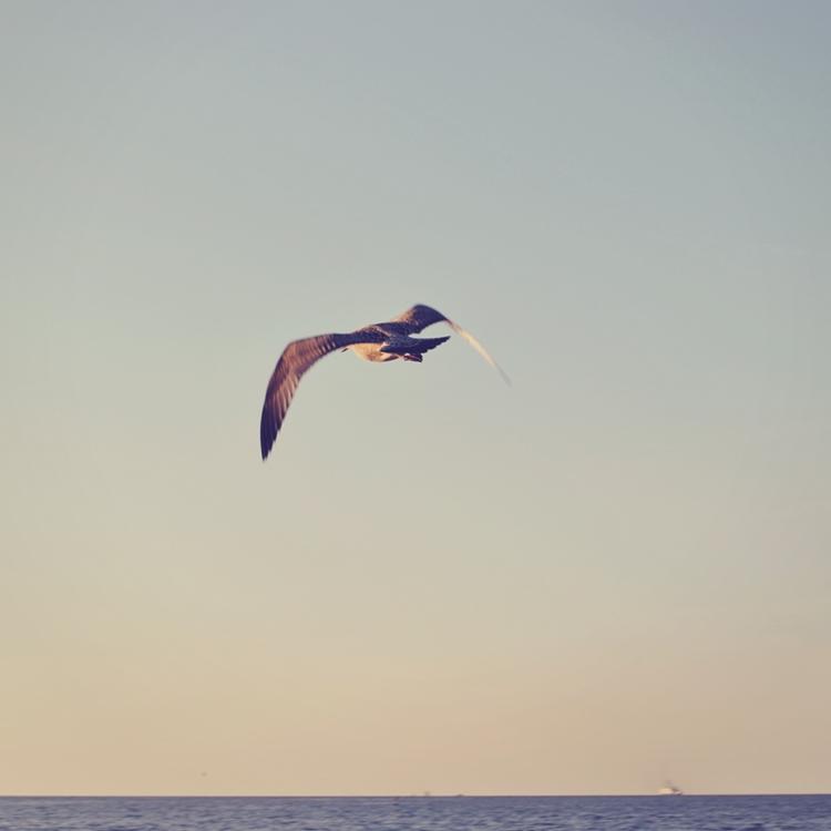 morze bałtyckie bałtyk świnoujście magdalena błaszczyk fotografia cuda niewidy 5