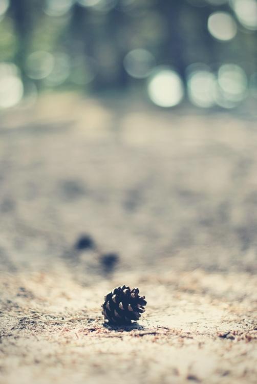 morze bałtyckie bałtyk świnoujście magdalena błaszczyk fotografia cuda niewidy 7
